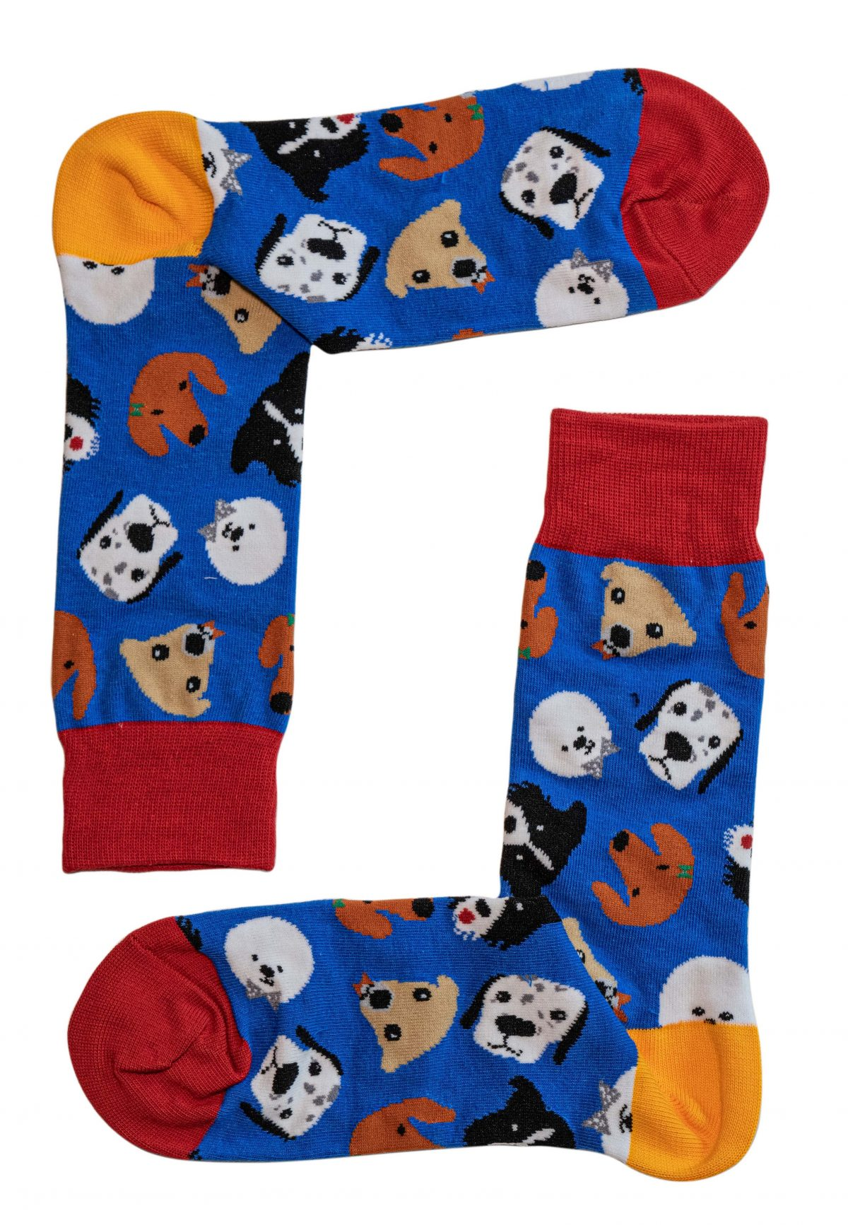 Dog Party Socks