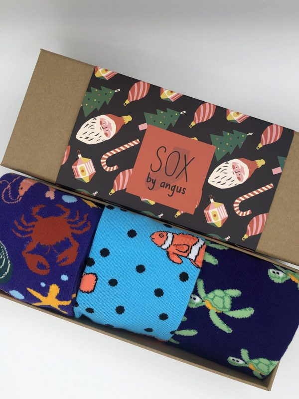 X'mas Gift Box D (Combed cotton novelty socks)